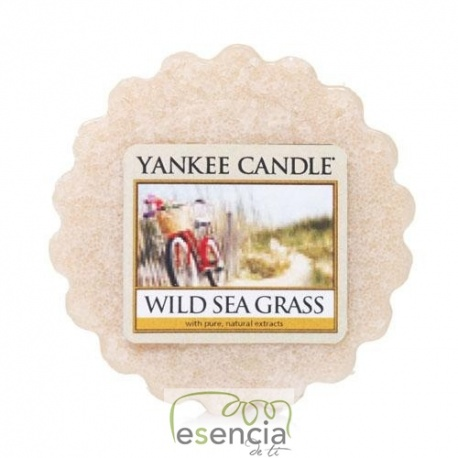 YANKEE TARTS WILD SEA GRASS