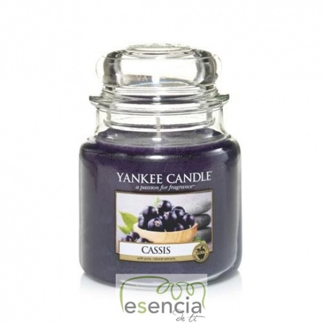 YANKEE BOTE MEDIANO CASSIS