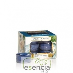 YANKEE TEA LIGHT BLUEBERRY SCON