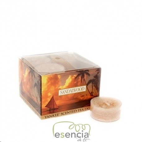 YANKEE TEA LIGHT SANDALWOOD