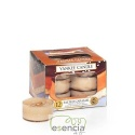 YANKEE TEA LIGHT CREAY CARAMEL