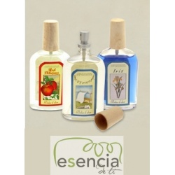 AMBIENTADOR 100 ML LIMA TROPICAL
