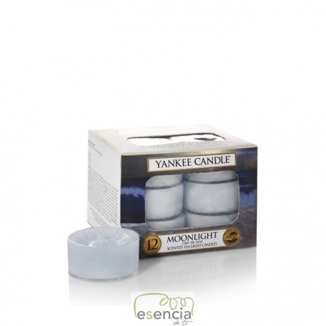 YANKEE TEA LIGHT MOONLIGTH