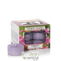 YANKEE TEA LIGHT VERBENA