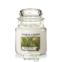 YANKEE BOTE MEDIANO WHITE TEA