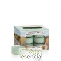 YANKEE TEA LIGHT COASTAL LIVING 12 UN