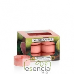 YANKEE TEA LIGHT DELICIOUS GUAVA 12 UN