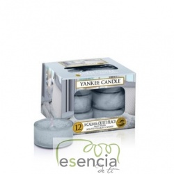 YANKEE TEA LIGHT A CALM & QUIET PLACE 12 UN