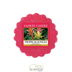 YANKEE TARTS TROPICAL JUNGLE