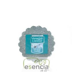 Tarta Icy Blue Spruce