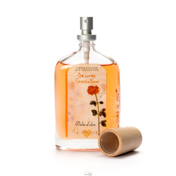 AMBIENTADOR 100 ML ORANGE SENSATION