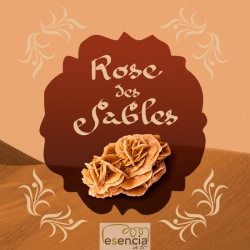 ON THE CAR ROSA DE SABLES