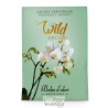 Mini Sachet Wild Orchid