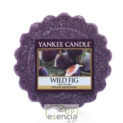 YANKEE TARTS WILD FIG